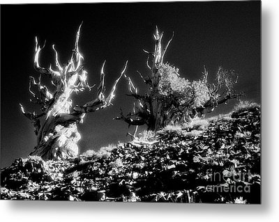 The Ancients - 1001 Metal Print by Paul W Faust -  Impressions of Light