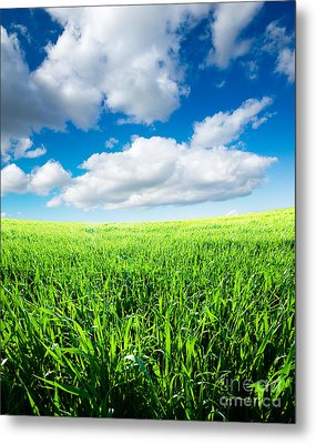 The Beautiful Greens Landscape Metal Print by Boon Mee