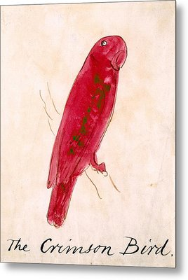 The Crimson Bird Metal Print