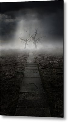 The Dark Land Metal Print by Jaroslaw Blaminsky
