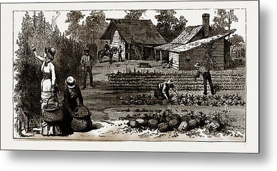 The English Garden, Scenes In Rugby, The English Colony Metal Print by Litz Collection