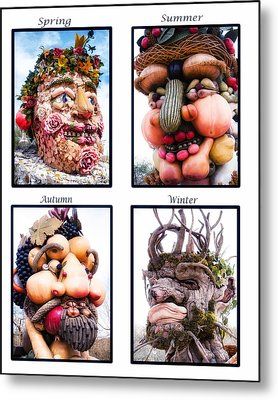 The Four Seasons Metal Print by Diane Wood