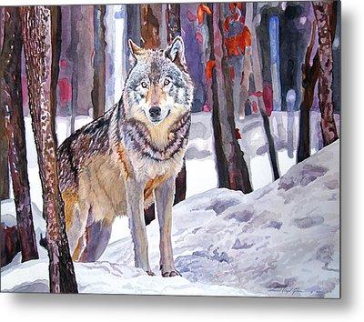 The Lone Wolf Metal Print