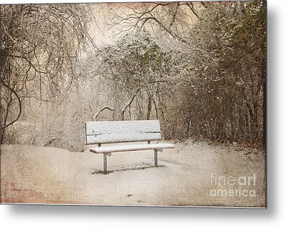 The Lonely Bench Metal Print by Betty LaRue