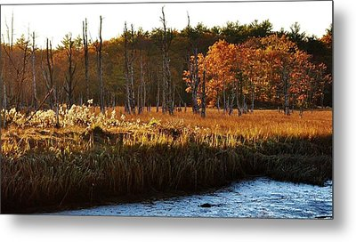 Metal Print featuring the photograph The Marsh by Paul Noble