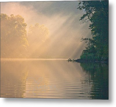 The Morning After Metal Print by Tom Cameron