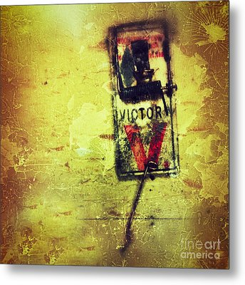 The Mousetrap Metal Print by Amy Cicconi