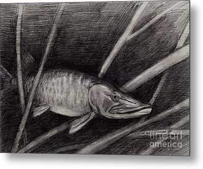 The Musky Metal Print by Larry Green