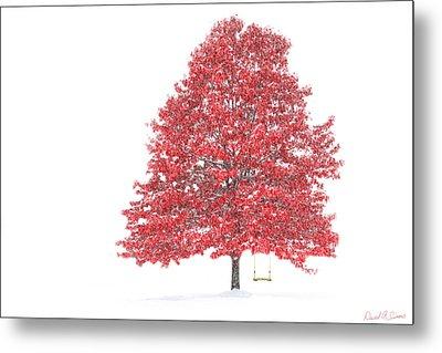 The Oak Tree Metal Print by David Simons