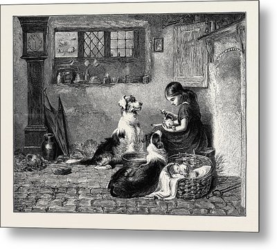 The Orphans, A Drawing In The Dudley Gallery Metal Print by Riviere, Briton (1840-1920), English