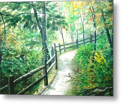 The Park Trail - Mill Creek Park Metal Print