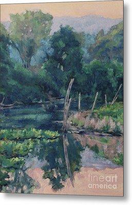 The Pond's Edge Metal Print by Gregory Arnett