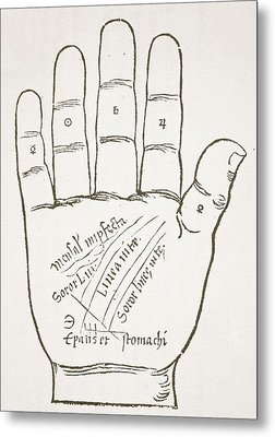 Antique Palmistry Diagram  The Right Hand, Principal Lines Metal Print