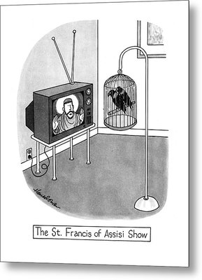 The St. Francis Of Assisi Show Metal Print