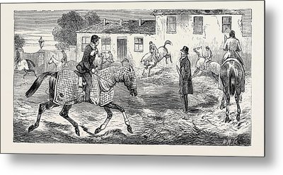 The Training Of A Racehorse Exercising On The Straw Bed Metal Print