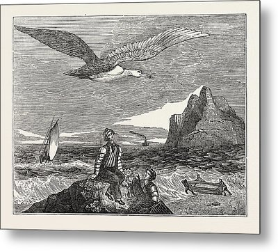 The Wandering Albatross Metal Print by Litz Collection