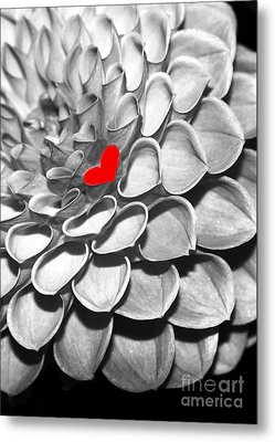This Heart Is For You Metal Print by Sabrina L Ryan