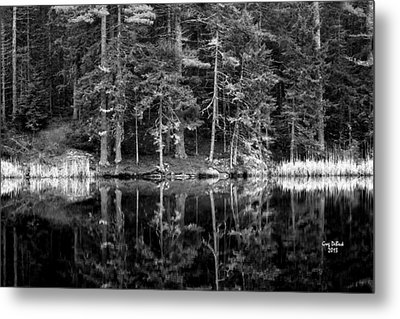 This World Of Ours Metal Print by Greg DeBeck