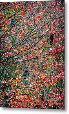 Three Crows In A Tree Metal Print