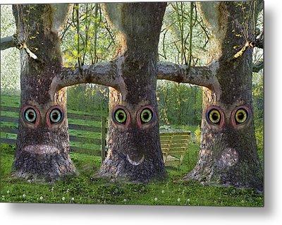 Three Trees Metal Print by Betsy Knapp
