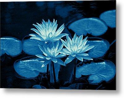 Three Water Lilies In Cyan Metal Print by Linda Phelps