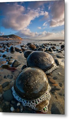 Tiny Giants Metal Print by Peter Tellone