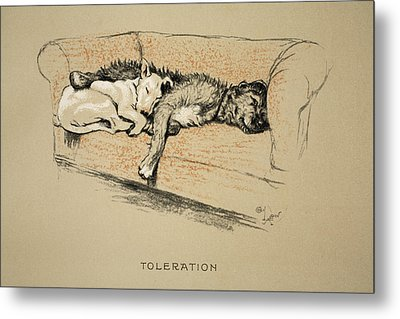 Toleration, 1930, 1st Edition Metal Print by Cecil Charles Windsor Aldin
