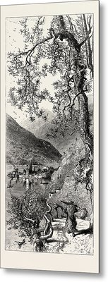 Torno, Lago Di Como, Lario, The Italian Lakes Metal Print by Italian School
