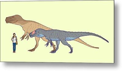 Torvosaurus Size Comparison Metal Print by Nemo Ramjet