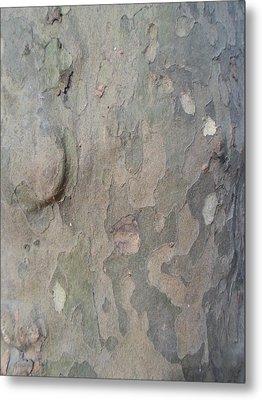 Tree Bark Metal Print by Jenna Mengersen