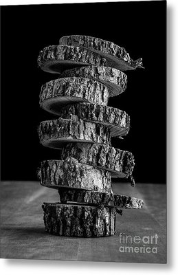 Tree Deconstructed Metal Print by Edward Fielding