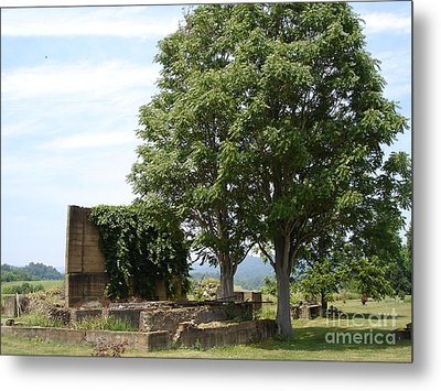 Metal Print featuring the photograph Tree House by Jane Ford