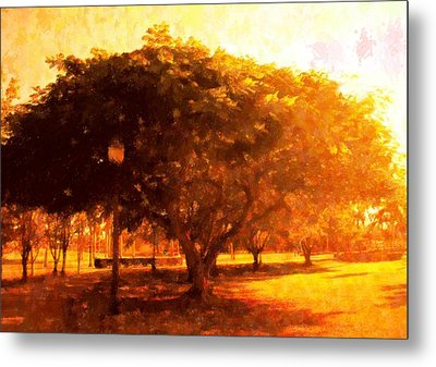 Tree In The Park Metal Print by Florene Welebny