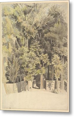 Trees By An Entrance To A Park Metal Print by Theodosius Forrest