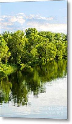 Trees Reflecting In River Metal Print by Elena Elisseeva