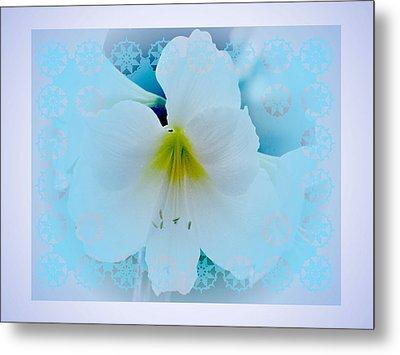White Lily Metal Print by Larry Capra