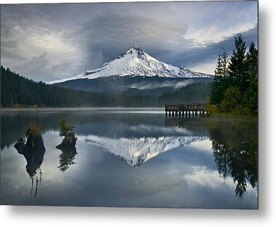 Trillium Reflections Metal Print by David  Forster