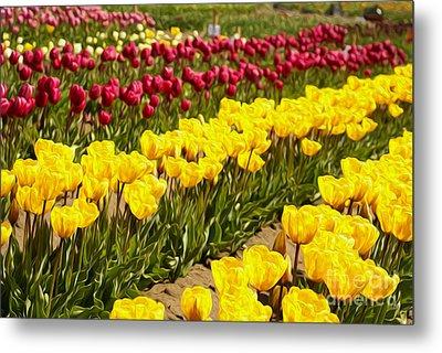 Tulip Field Metal Print by Nur Roy