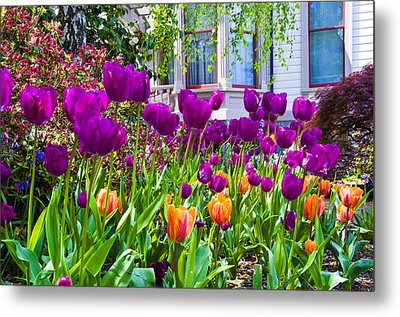 Tulips And Bush House Metal Print