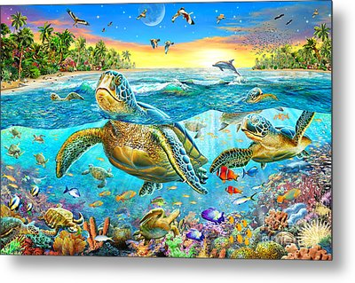 Turtle Cove Metal Print by Adrian Chesterman