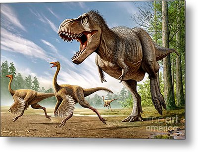 Tyrannosaurus Rex Attacking Two Metal Print by Mohamad Haghani