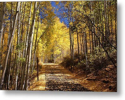 Vail Colorado Fall Bike Path Metal Print by Michael J Bauer