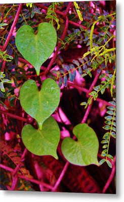 Valentine Au Natural Metal Print by Craig Wood
