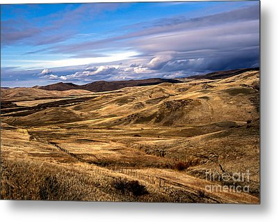 Vast View Of The Rolling Hills Metal Print by Robert Bales