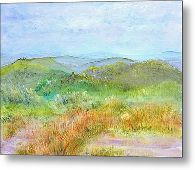 View From Bear Hill Metal Print