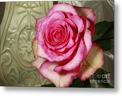 Vintage Beauty Rose Metal Print by Inspired Nature Photography Fine Art Photography