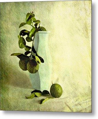 Vintage Limes Metal Print by Linde Townsend