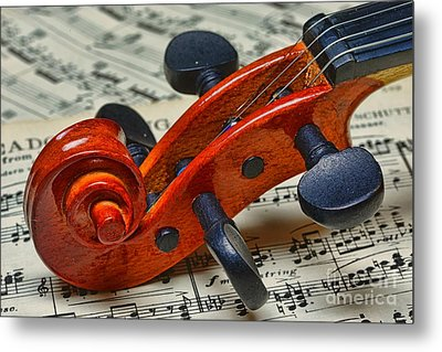 Violin Scroll Up Close Metal Print by Paul Ward
