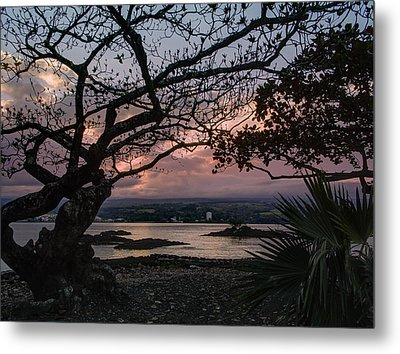 Volcanic Sunset On Hilo Bay - Big Island Metal Print by Daniel Hagerman