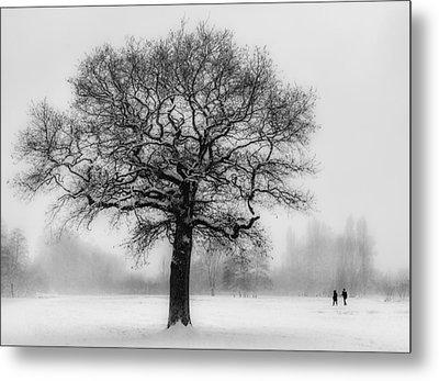 Walking In A Winter Wonderland Metal Print by Ian Hufton